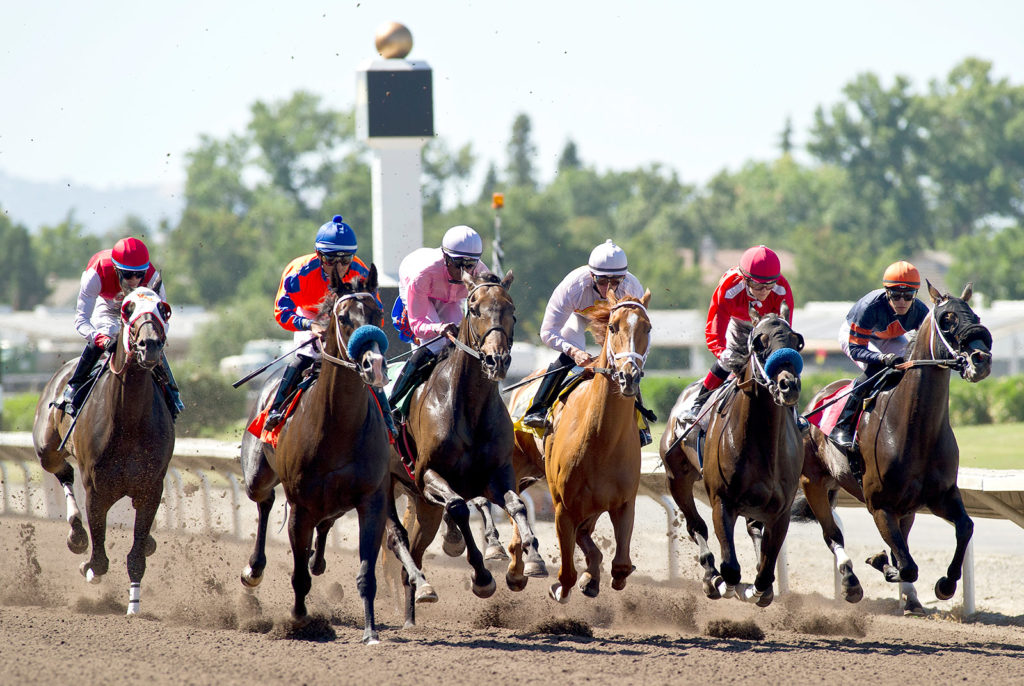 Live Racing at the Alameda County Fairgrounds